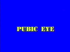 Public Eye. Are you ready for some hot classic action? God damn right you are! In the first scene this hot brunette does her thing to a casting agent while he runs his mouth. Then a sexy chick blows a guy in a moving car. And that's just the beginning; there's enough classic fucking to make you shoot load after load!