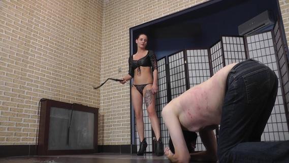 Bullwhip femdom Whip Porn